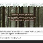 Elaboramos el plan de comunicación y visibilidad de la Associació Catalana Promotora de la Certificació Forestal PEFC Catalunya